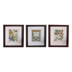 a rare and well-executed set of 3 french art nouveau chromolithographs of nasturtiums and sunflowers; PRICED INDIVIDUALLY