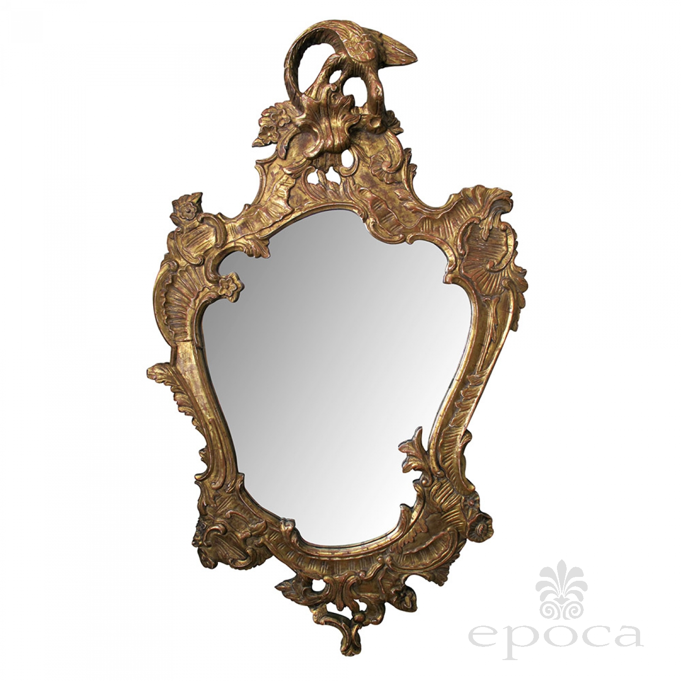 Perfect a curvaceous italian rococo style cartouche-shaped carved giltwood  XP28